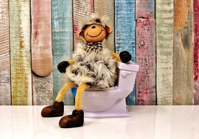 マジカルシェリーのトイレ問題を解説